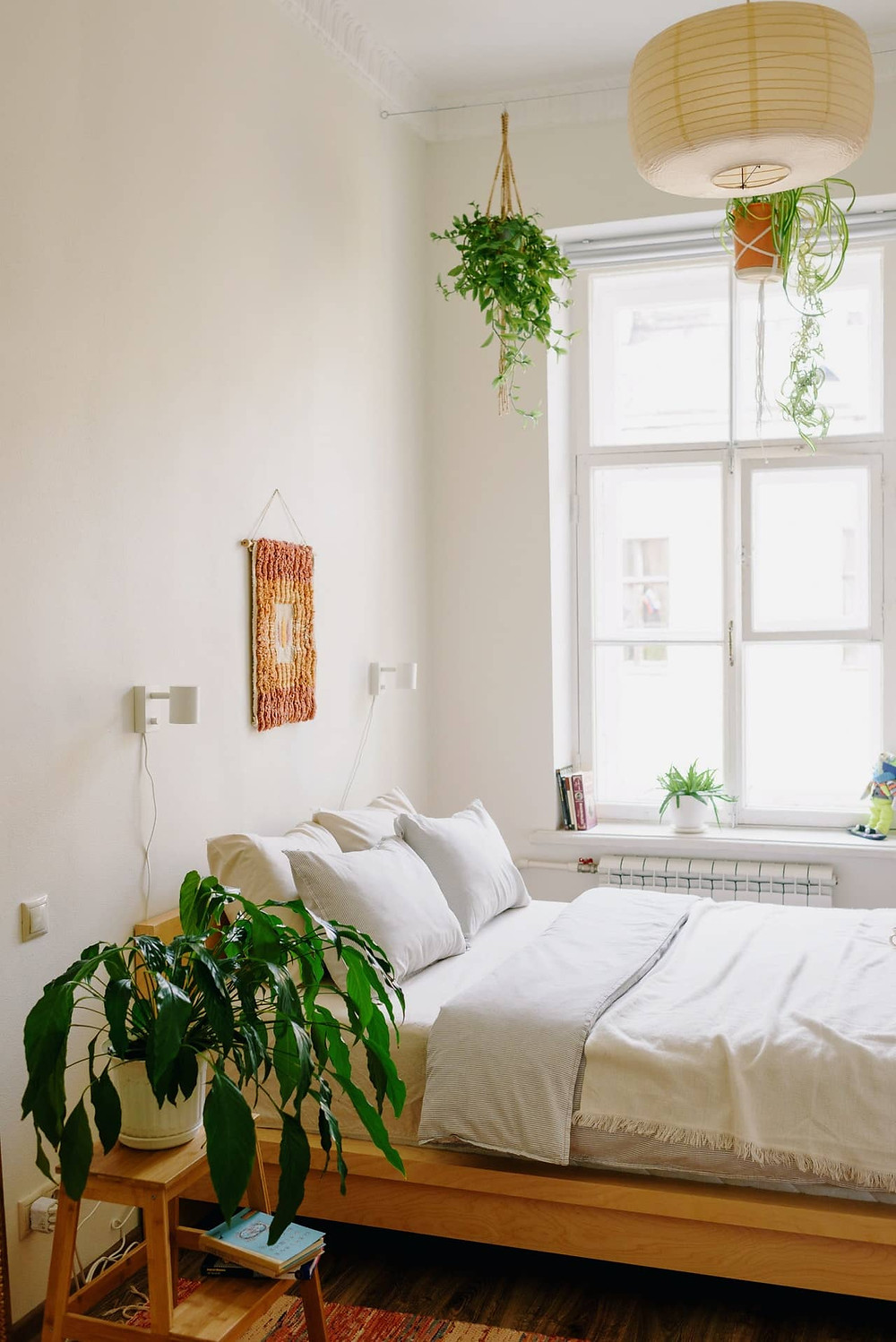 Best bedroom plants for producing oxygen, promoting relaxation and better sleep.