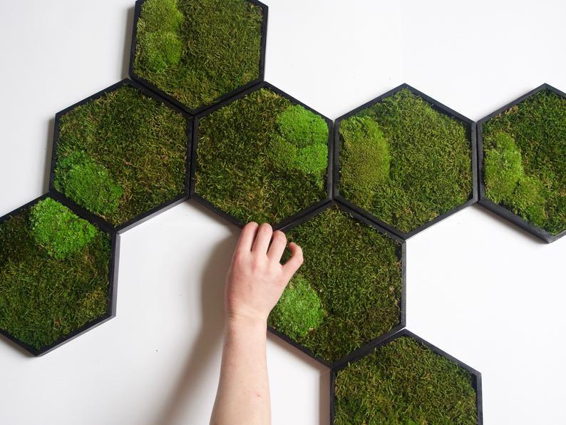 moss framed wall panels