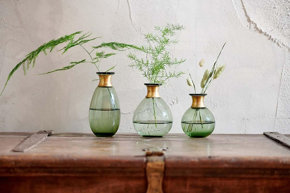 glass vase for bathroom plants in low light