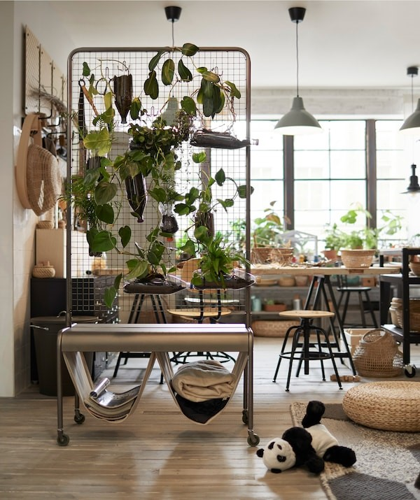 creative ways to use indoor plants as a room divider