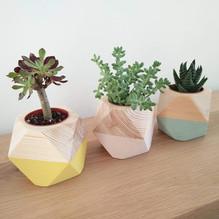 Wooden nursery planters
