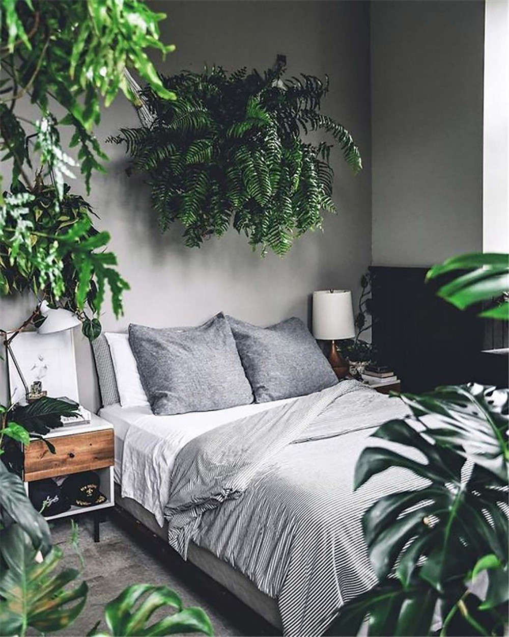 bedroom decor with plants biophilia