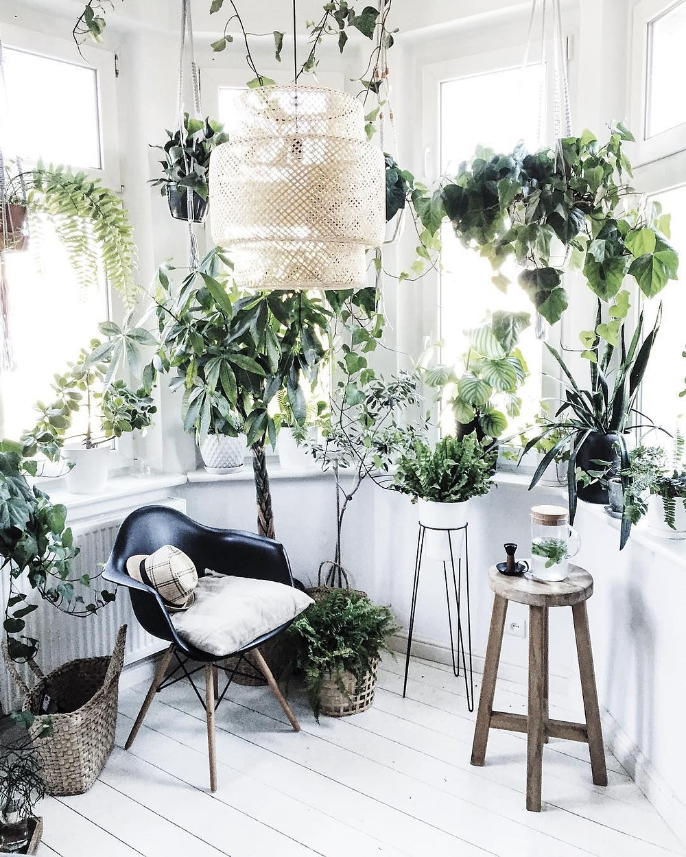 Reading nook decorated with indoor plants and natural wood stool. Easy ways to include Biophilic Design at your home
