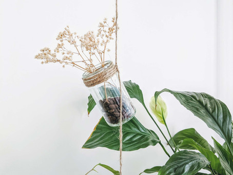 How to DIY an Eco-Friendly Hanging Planter