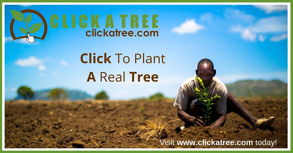 Click on the image to plant a tree.