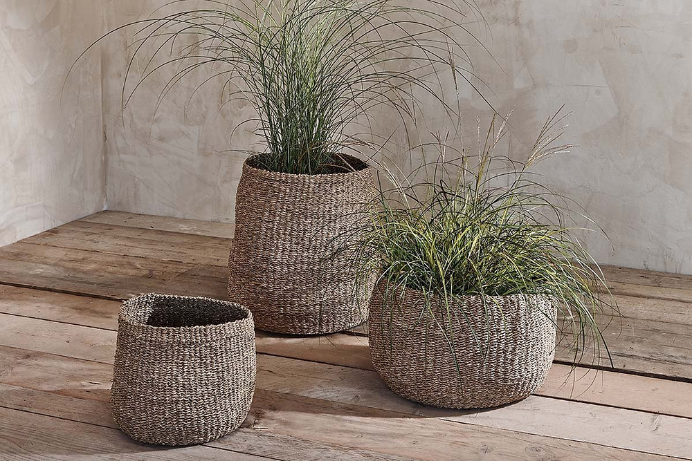 Seagrass basket planter for bathroom plants
