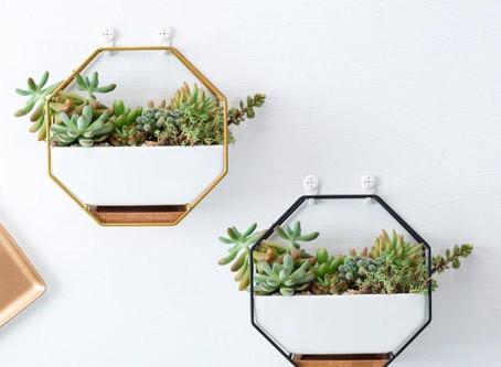 Beautiful Geometric Succulent Planters - Wall Decor Ideas