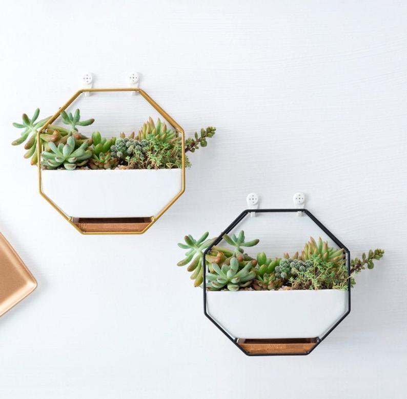 Geometric succulent ceramic planter decorating ideas