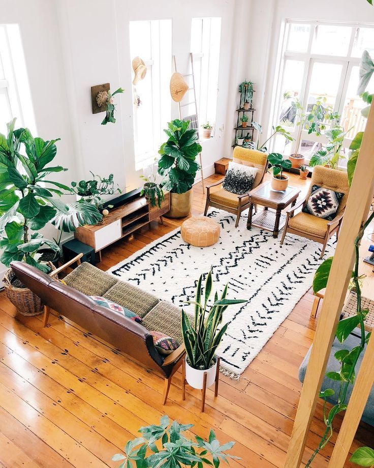 decorate your living room with plants