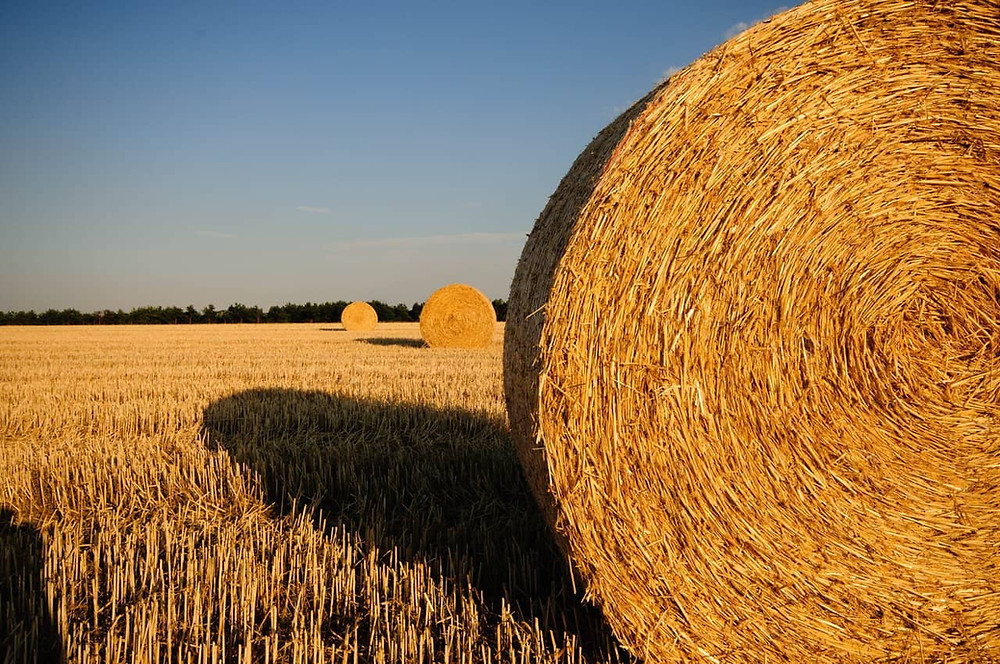 Straw bales - natural building material
