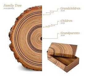 Eco-Friendly Storage Box, Family Tree by