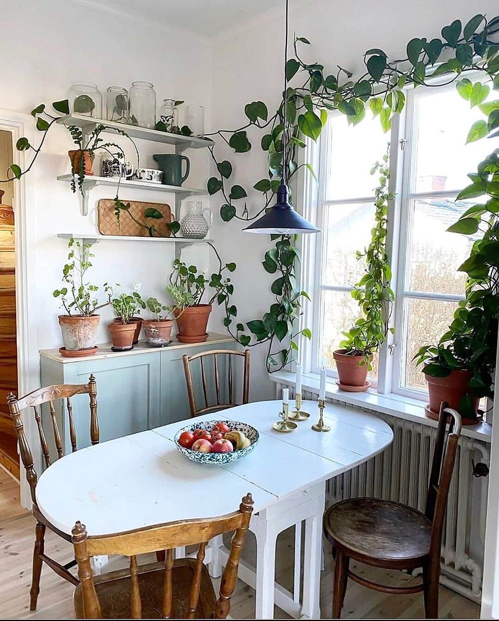 Dining table near the window as a perfect example of Biophilic design concept.