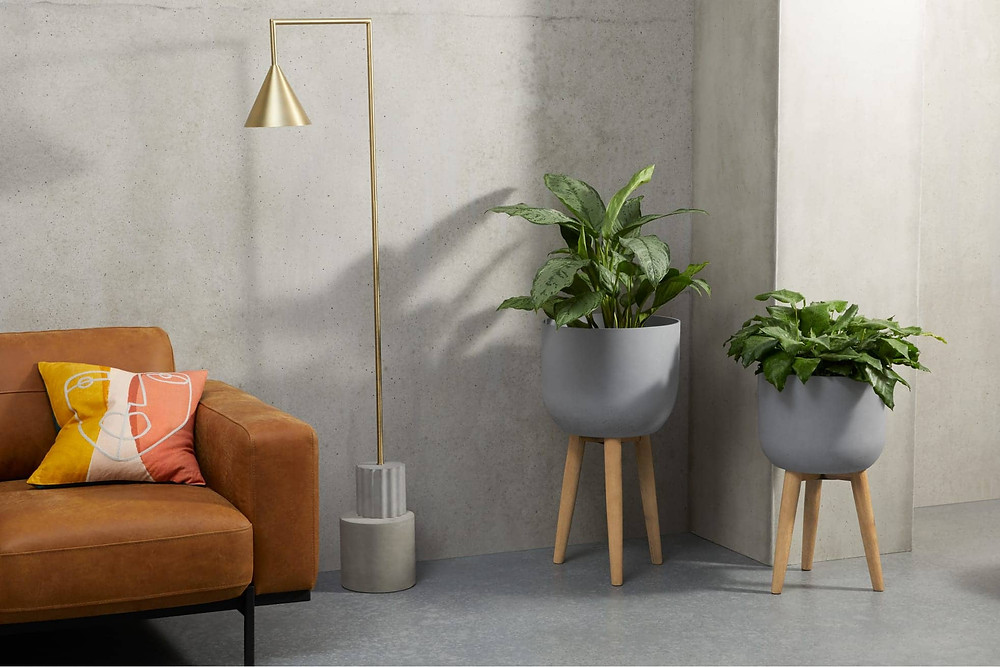 set of two grey concrete pots in wooden stands. Click on the image to shop the post on made.com