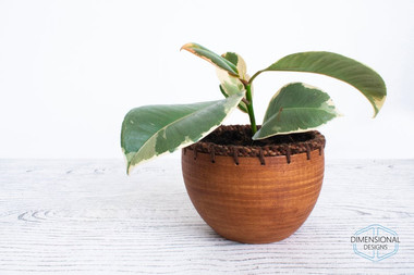 Wood and Fabric Bowl.jpg