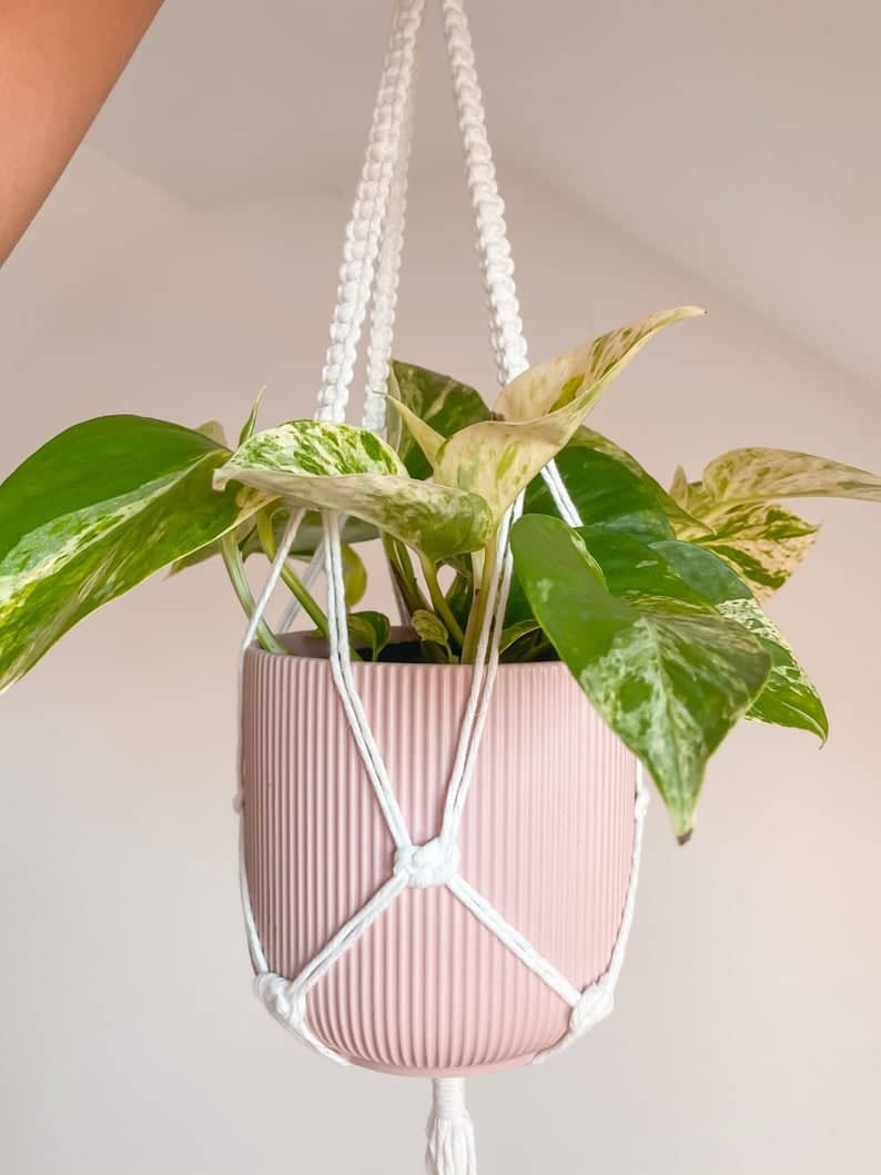 Bohemian style planter in pastel pink with white rope and pothos plant. Click on the image to shop from Etsy Maker.