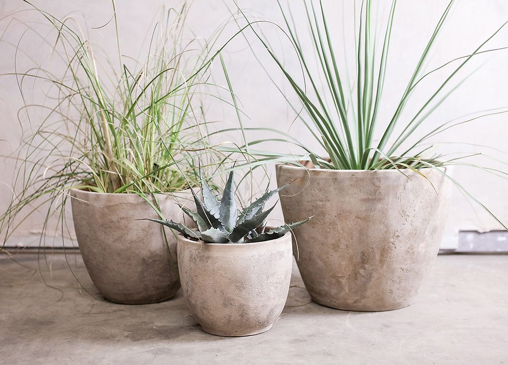 natural clay planter for bathroom plants in high humidity