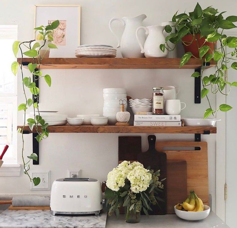 Dark wood kitchen open shelving nicely decorated with white china and two pothos plants.