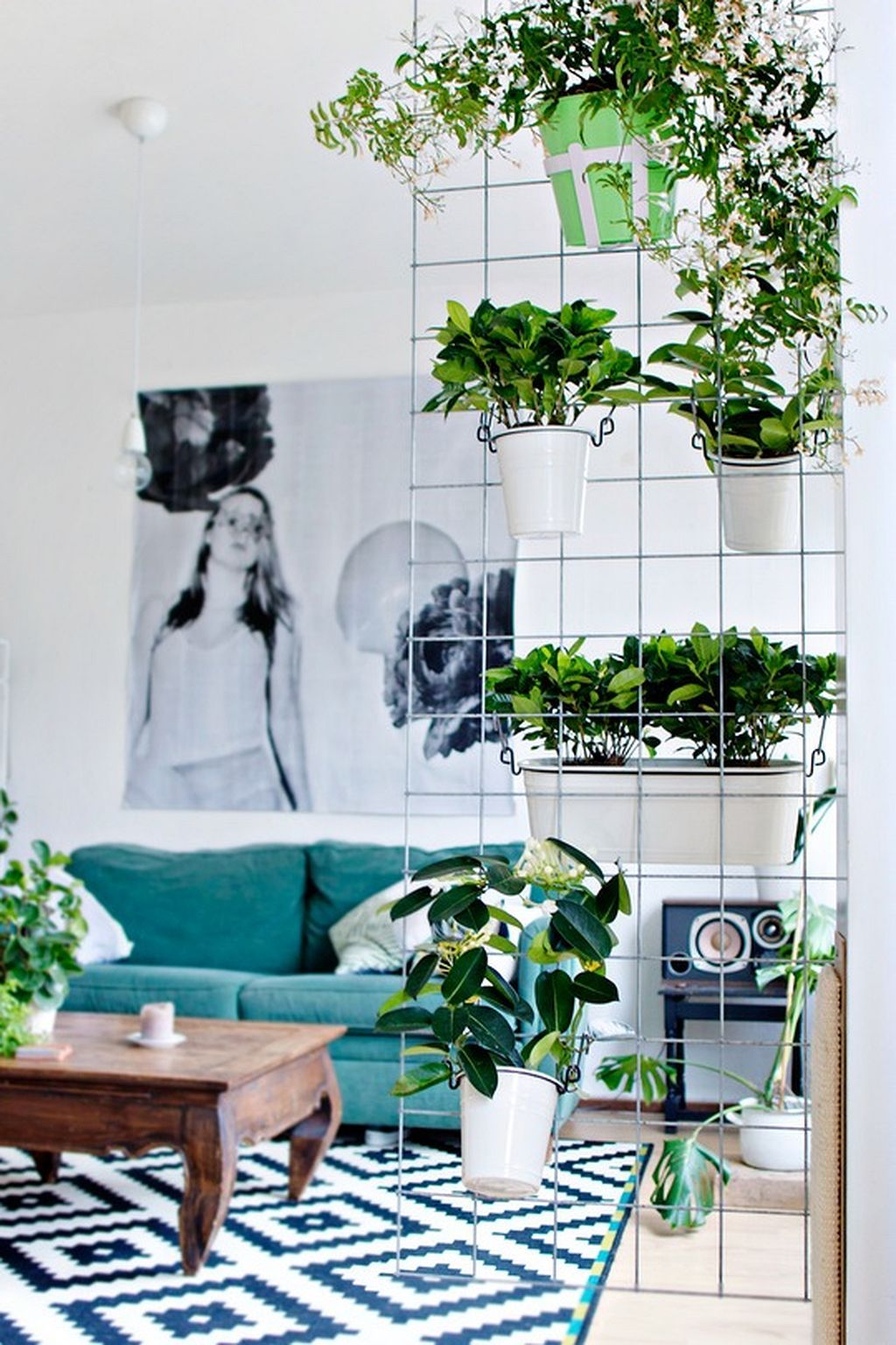 Room divider ideas with potted plants