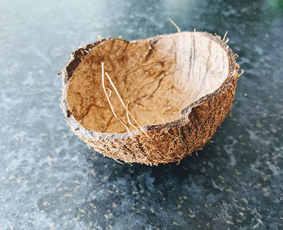 how to make plant holder with a coconut shell. Empty coconut shell on a kitchen counter