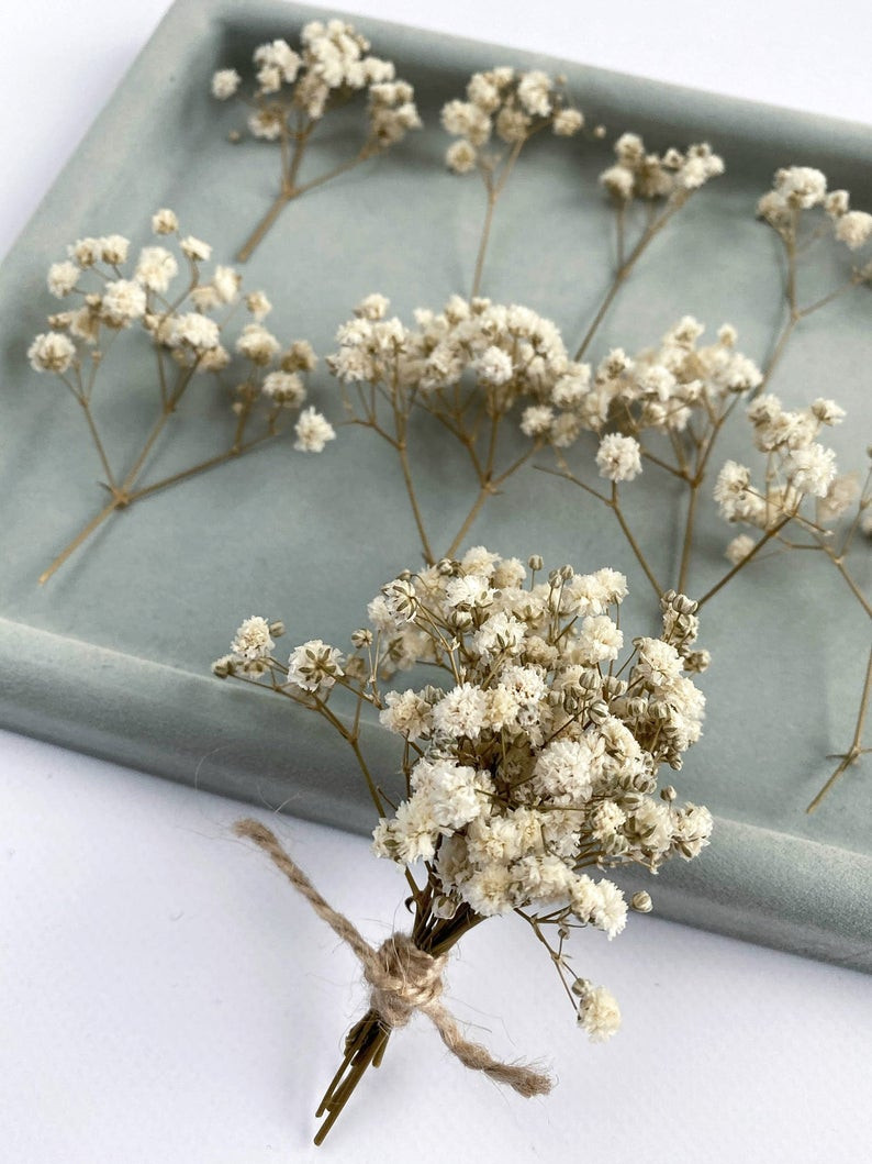 Dried Baby Breath flowers DIY supply for hanging glass planter