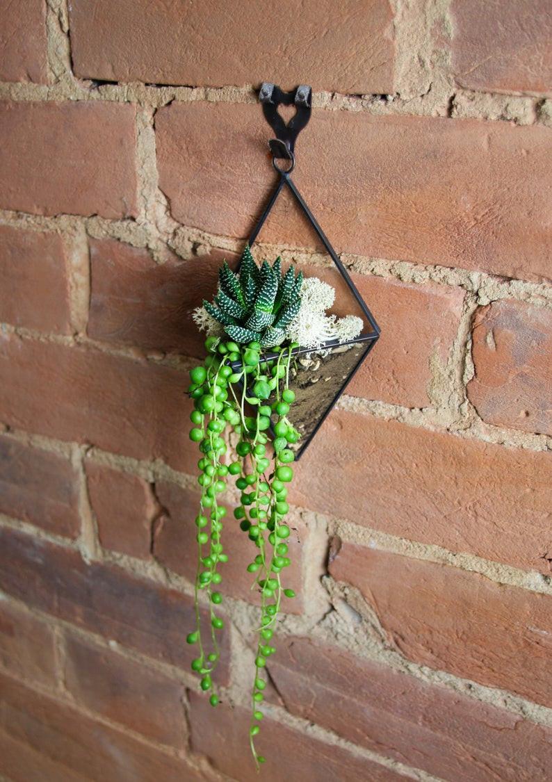 Hanging geometric terrarium