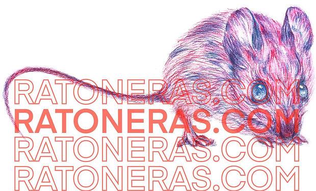 Ratoneras.com_Eduardo Abaroa_Desarrollo