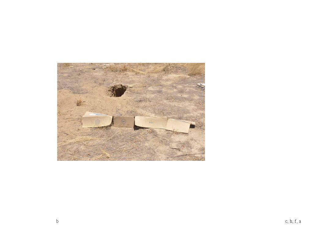 iArquitecturas del desierto