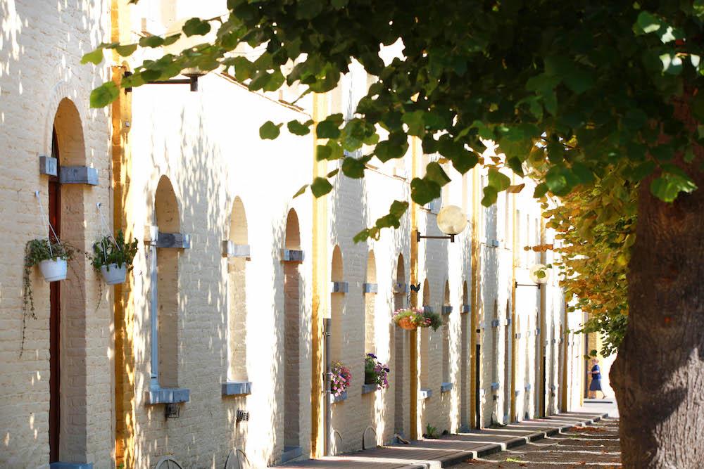 Bois-du-Luc, la cité - photo : CGT, A