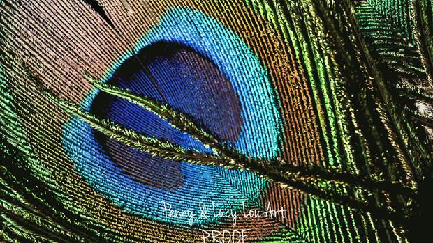 DSC03428 edit PROOF.jpg