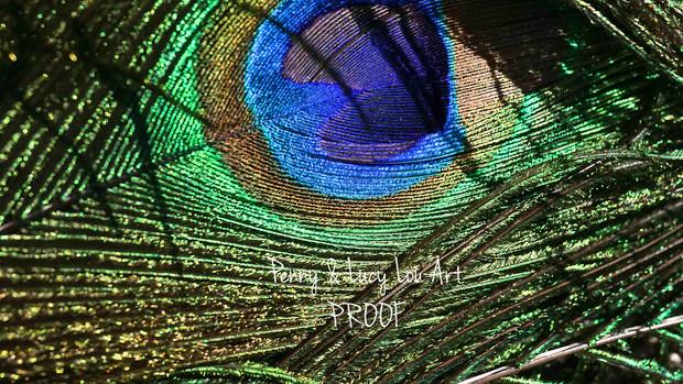 DSC03424 edit PROOF.jpg