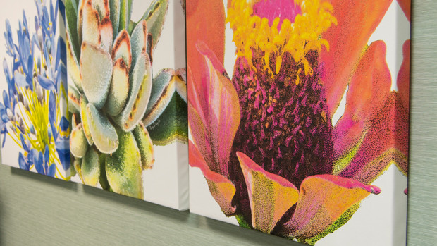 Gallery - Wrapped Canvas