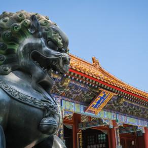 中國強大的理由:《五十年後節錄》