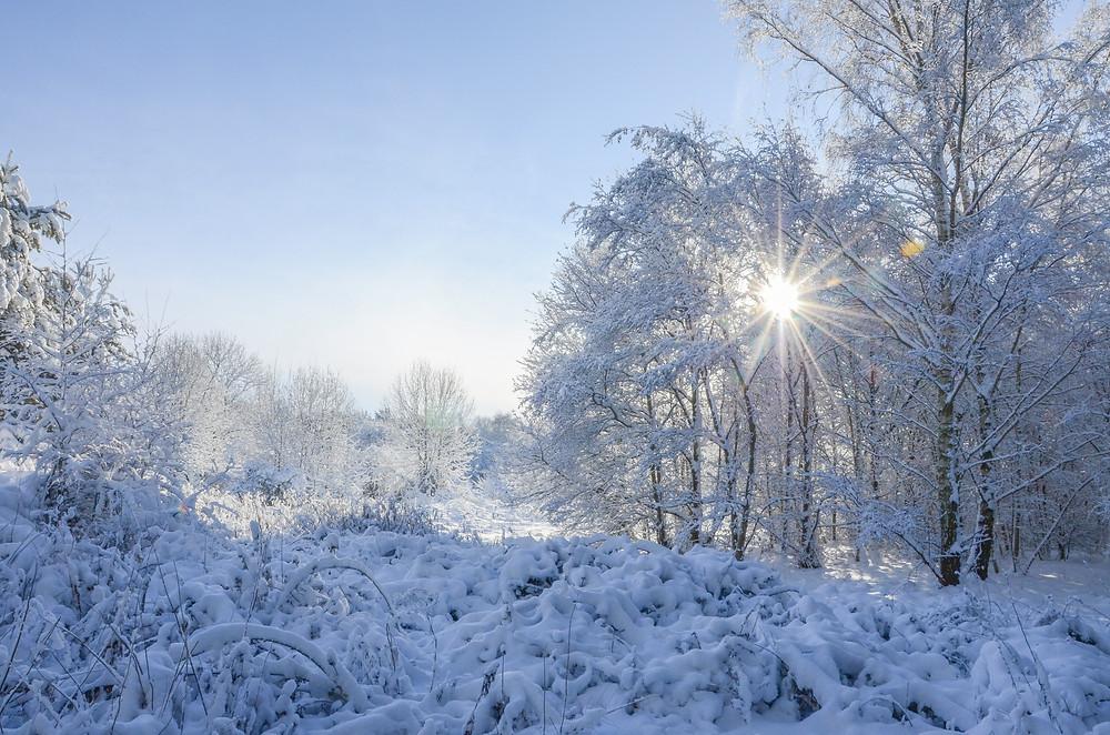 beautiful winter wonderland scene, from Telford photographer Kelly Rann