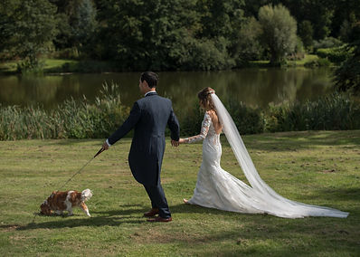 photograph of Just married couple walking hand in hand with their dog in the sunshine