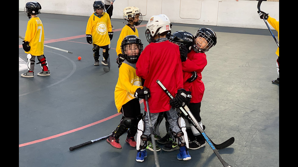Spring Youth Ball Hockey