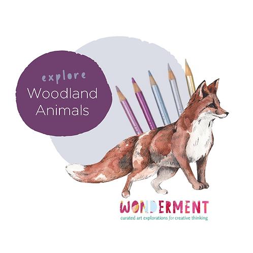Explore Woodland Animals