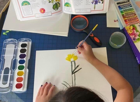Our Favorite Art Supplies for Home