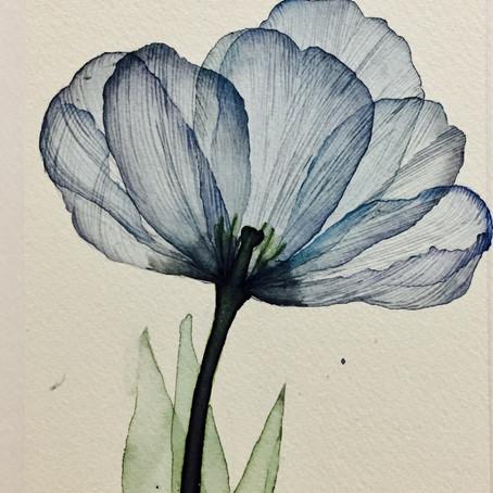 """x-ray flowers photo """"Albert Koetsier"""" を水彩画でなぞってみました"""