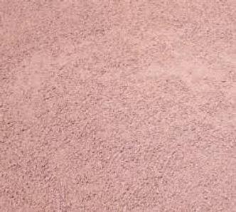 SABLE ROSE.jpg