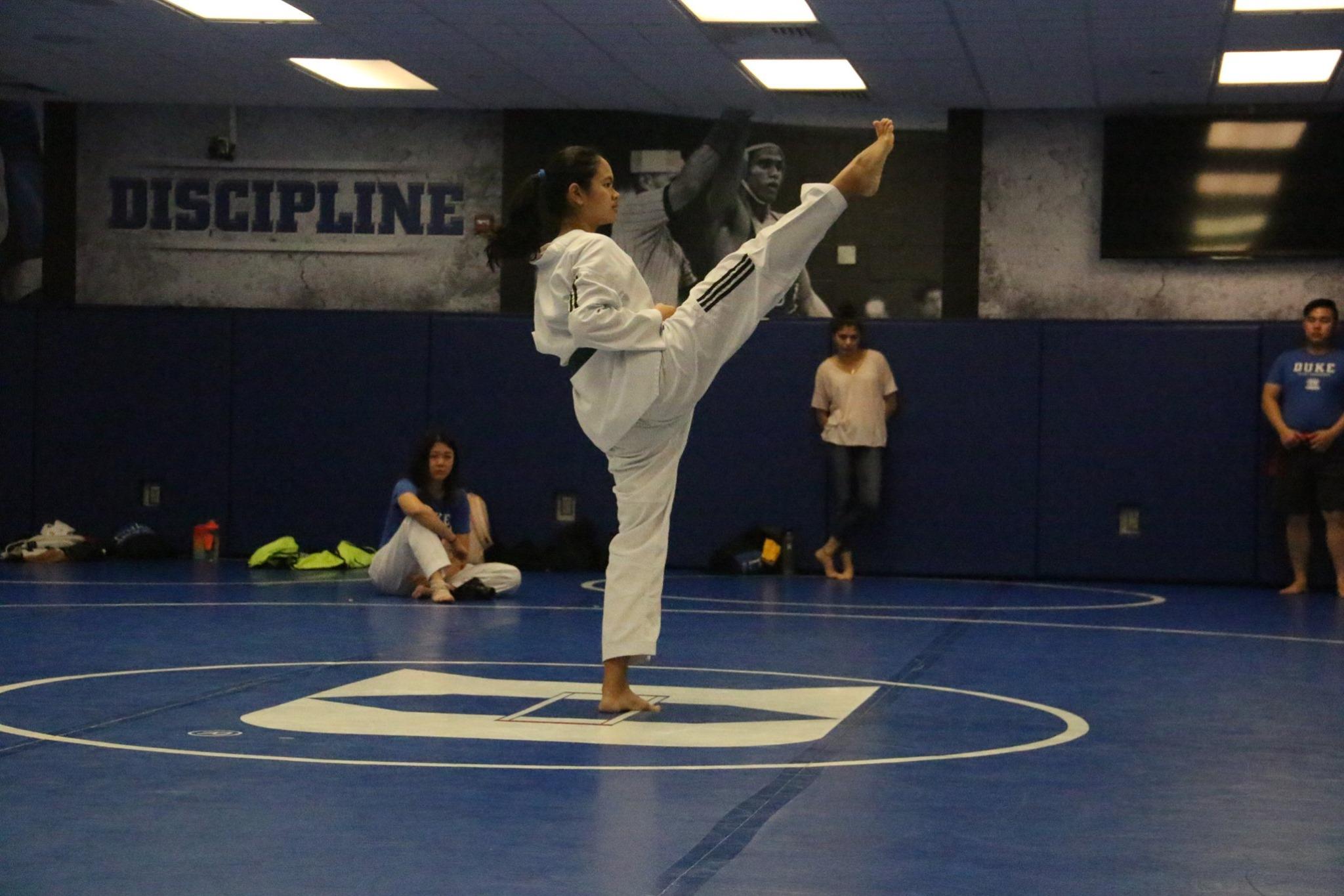 Duke TKD 1st Belt Test 8