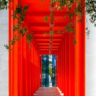 Red Arcade, Miami