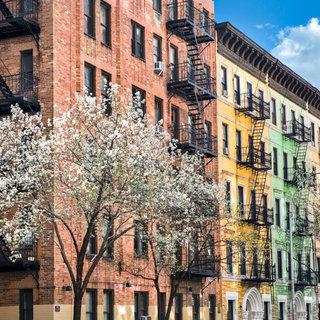 Blossom, New York