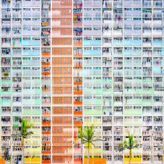 Hong Kong vibration