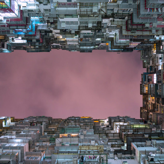 Urban Jungle, HK