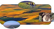 argosystems.jpg