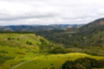 15 Mesa Trail