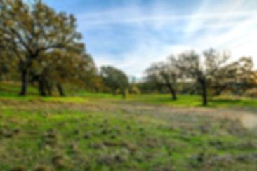 14 Vasquez Trail
