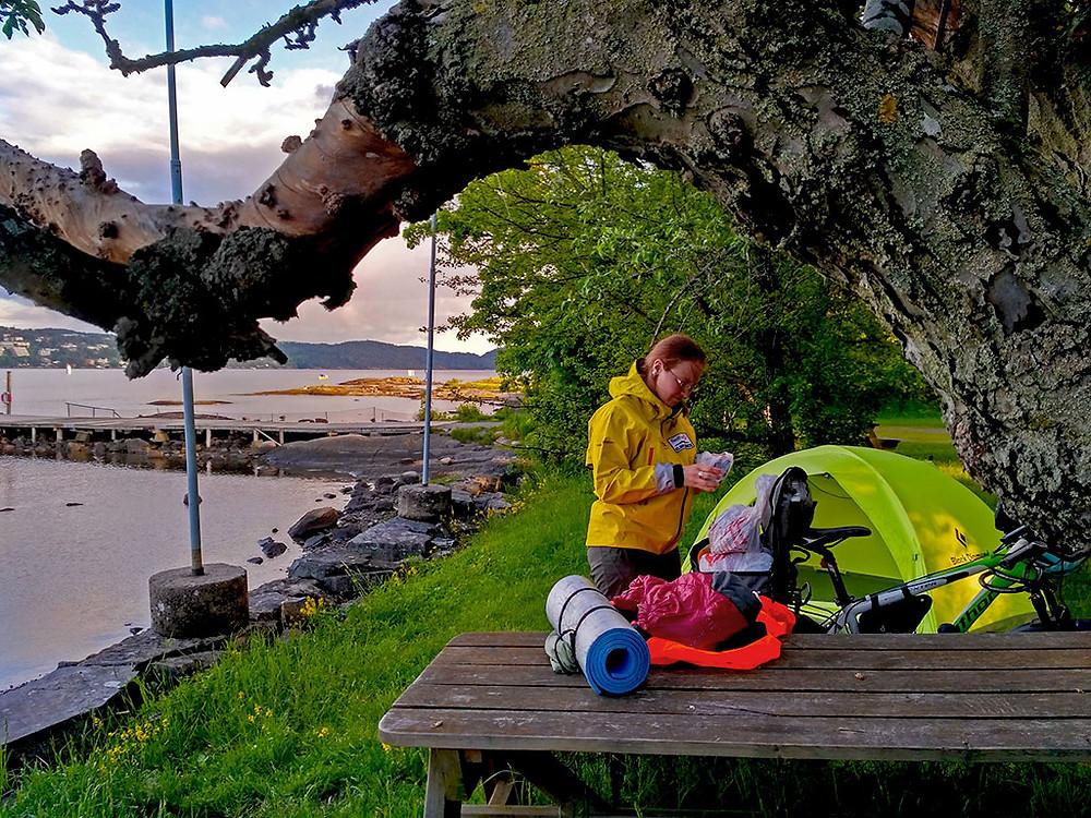 Норвегия. Острова Малмоя (Malmøya).
