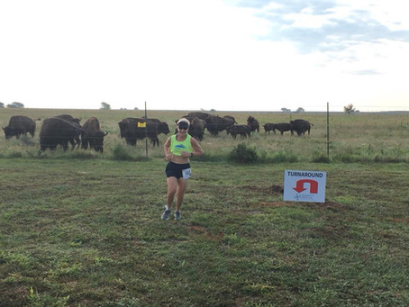 Randy's Run Celebrates Running, Bison