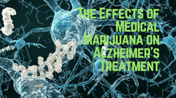 CBD a Better and Safer Treatment Option for Alzheimers